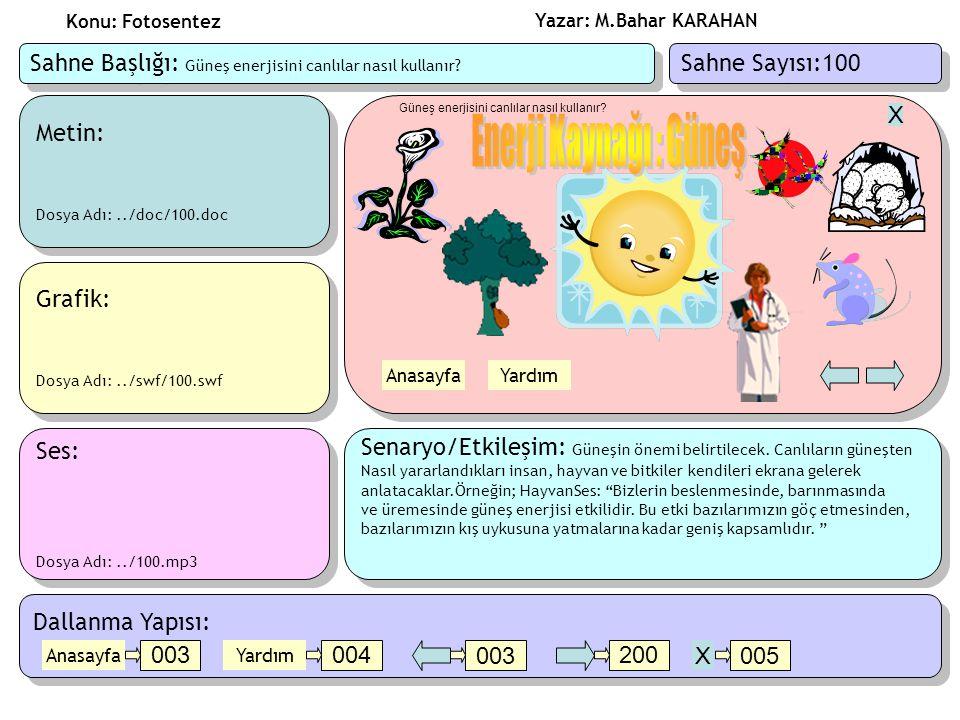 Konu: Fotosentez Sahne Başlığı: Güneş enerjisini canlılar nasıl kullanır Sahne Sayısı:100. Metin: