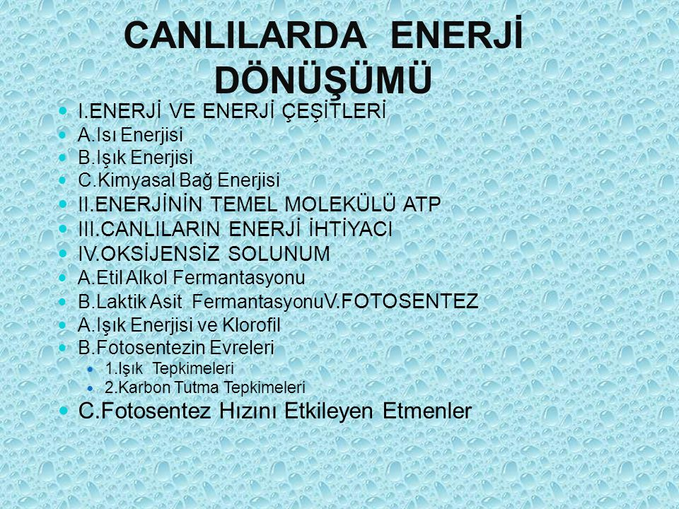CANLILARDA ENERJİ DÖNÜŞÜMÜ