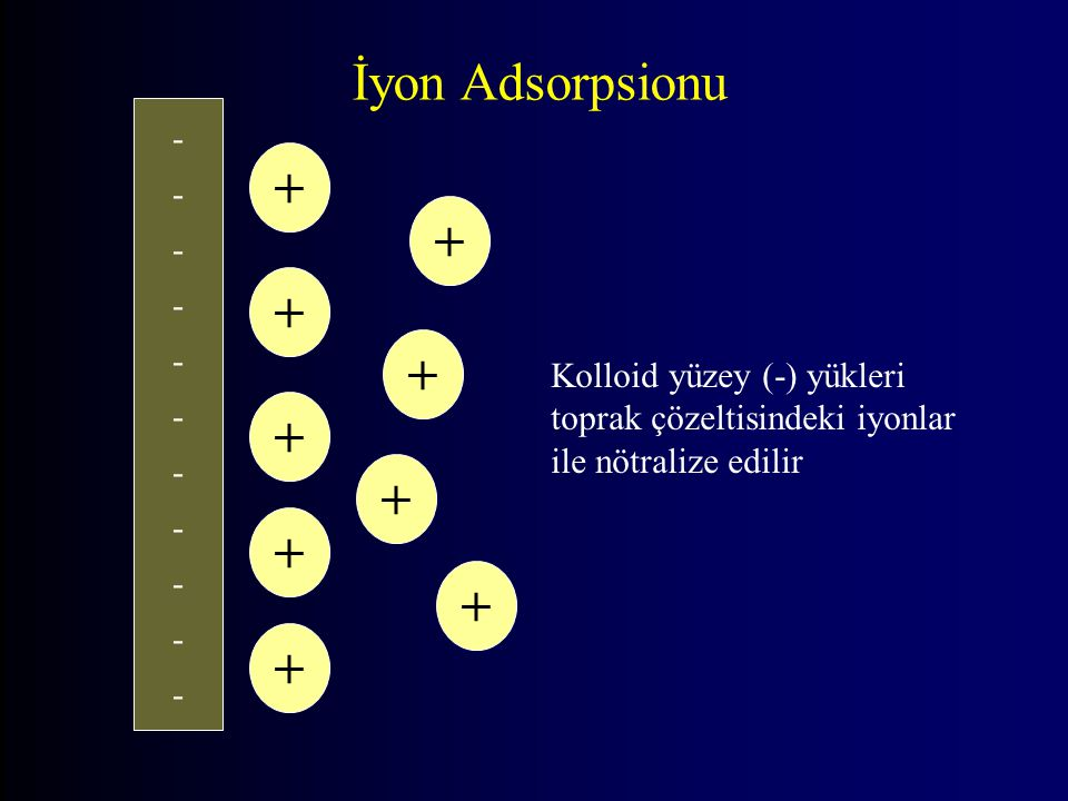 İyon Adsorpsionu + + + + + + + + + -