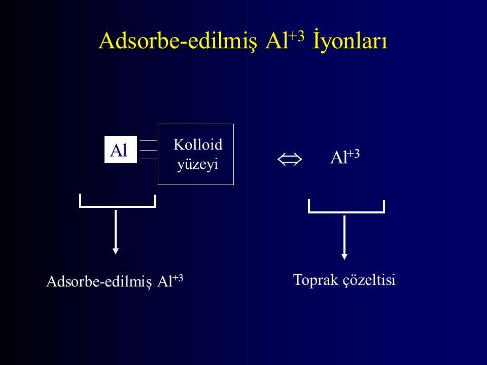 Adsorbe-edilmiş Al+3 İyonları