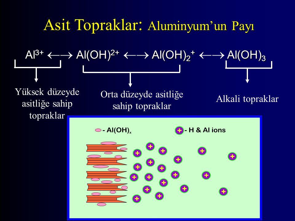 Asit Topraklar: Aluminyum'un Payı