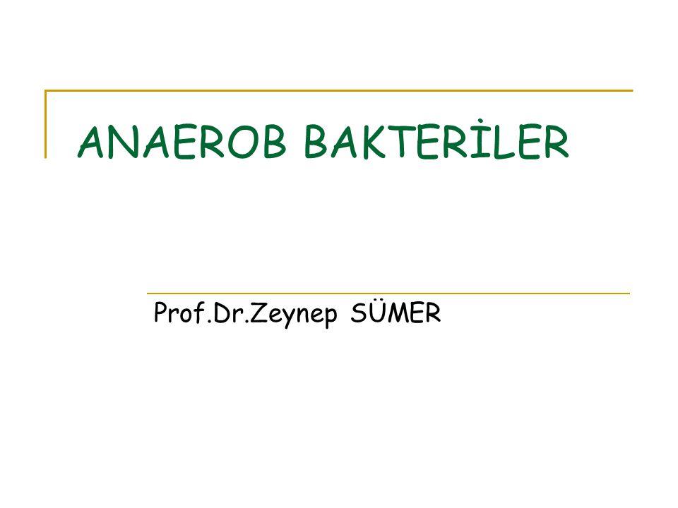ANAEROB BAKTERİLER Prof.Dr.Zeynep SÜMER