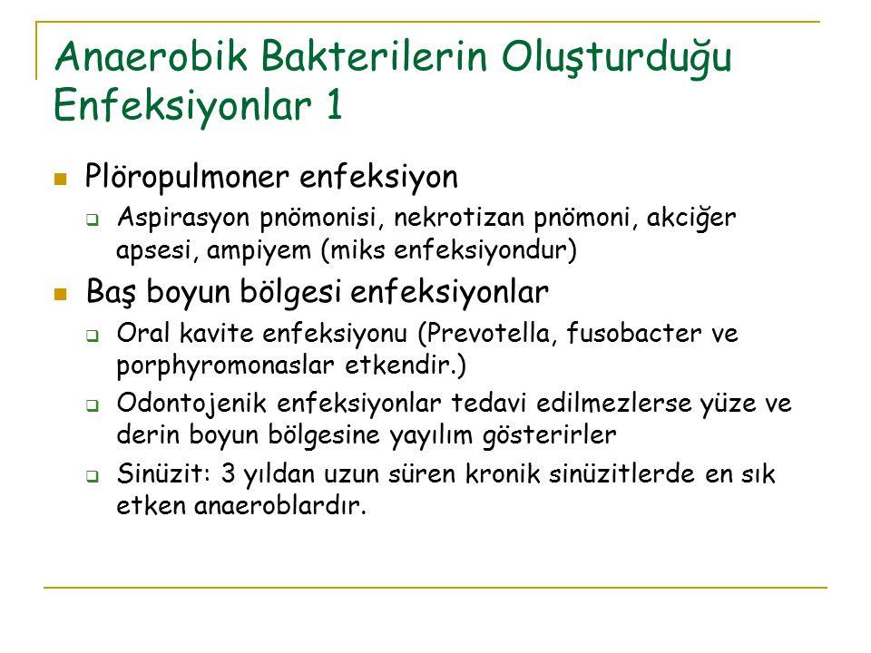 Anaerobik Bakterilerin Oluşturduğu Enfeksiyonlar 1