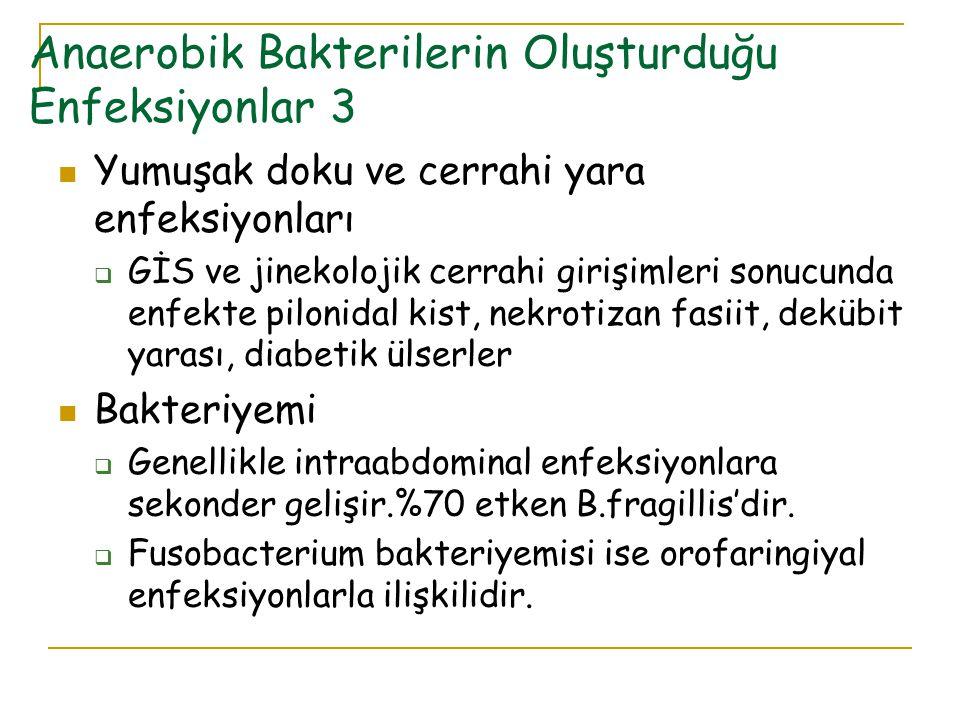 Anaerobik Bakterilerin Oluşturduğu Enfeksiyonlar 3
