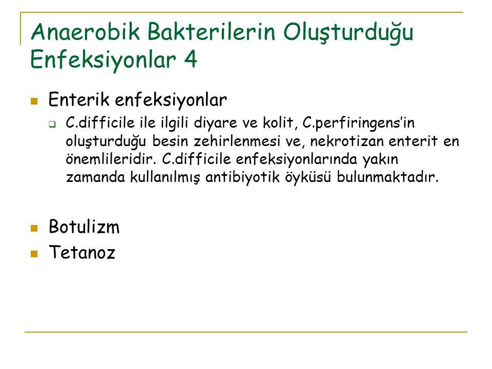 Anaerobik Bakterilerin Oluşturduğu Enfeksiyonlar 4
