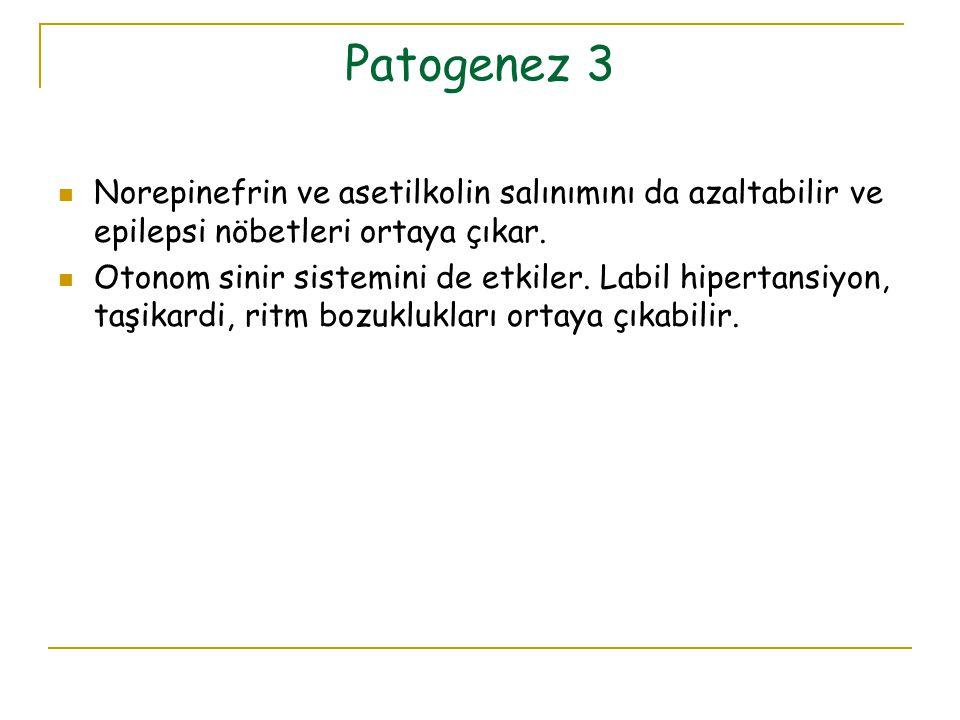 Patogenez 3 Norepinefrin ve asetilkolin salınımını da azaltabilir ve epilepsi nöbetleri ortaya çıkar.