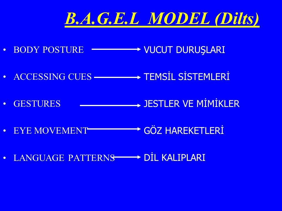 B.A.G.E.L MODEL (Dilts) BODY POSTURE ACCESSING CUES GESTURES