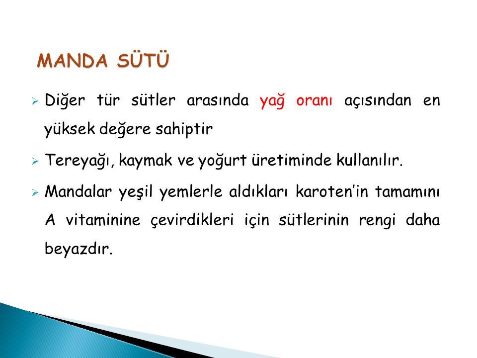 MANDA SÜTÜ Diğer tür sütler arasında yağ oranı açısından en yüksek değere sahiptir. Tereyağı, kaymak ve yoğurt üretiminde kullanılır.