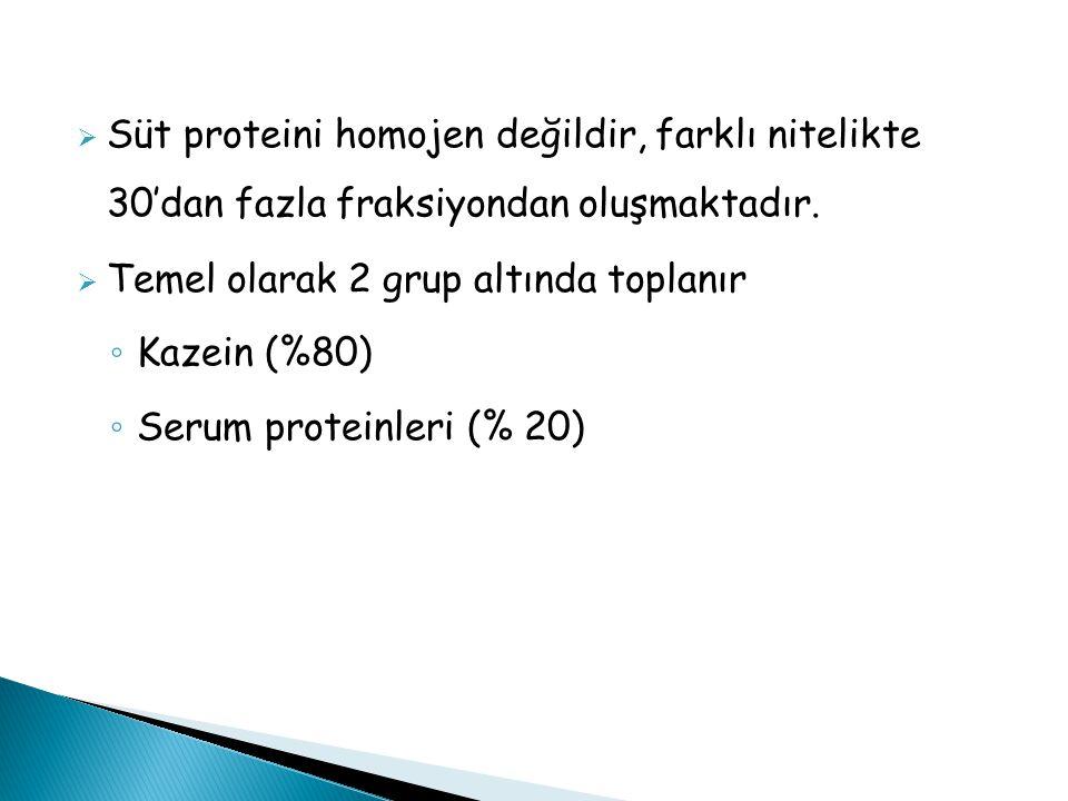 Süt proteini homojen değildir, farklı nitelikte 30'dan fazla fraksiyondan oluşmaktadır.