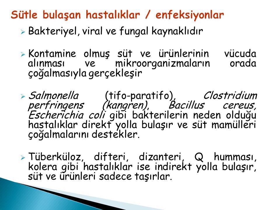 Sütle bulaşan hastalıklar / enfeksiyonlar