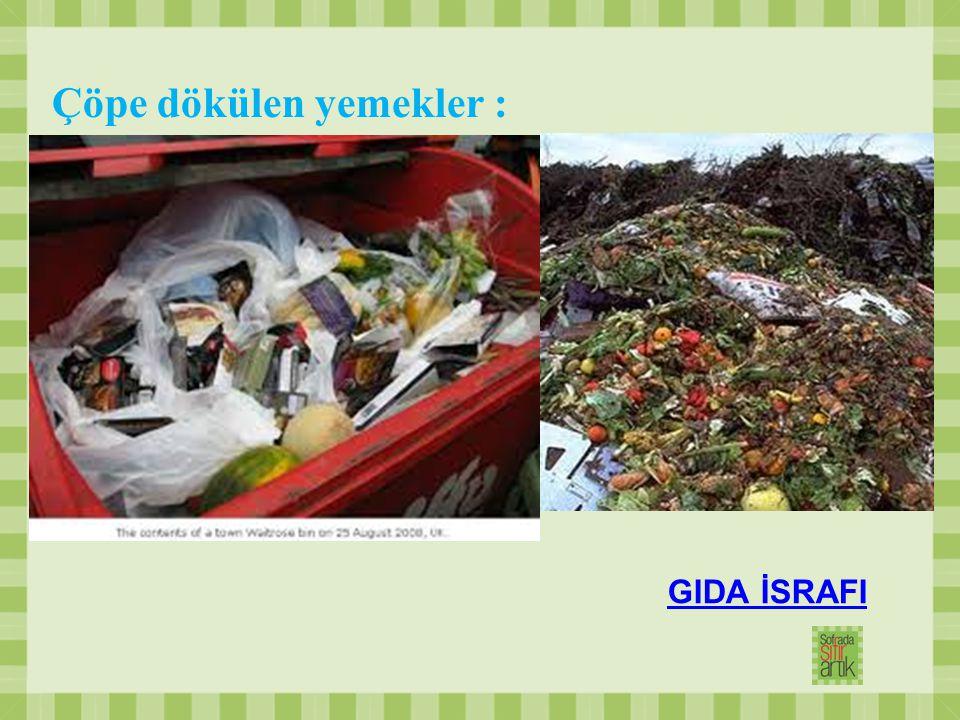 Çöpe dökülen yemekler :