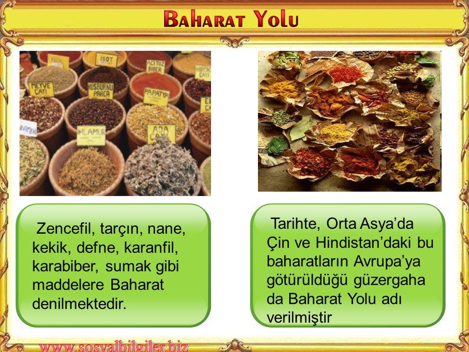 Tarihte, Orta Asya'da Çin ve Hindistan'daki bu baharatların Avrupa'ya götürüldüğü güzergaha da Baharat Yolu adı verilmiştir