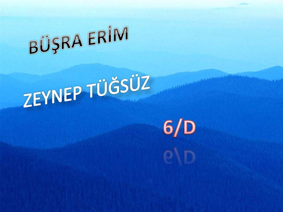 BÜŞRA ERİM ZEYNEP TÜĞSÜZ 6/D