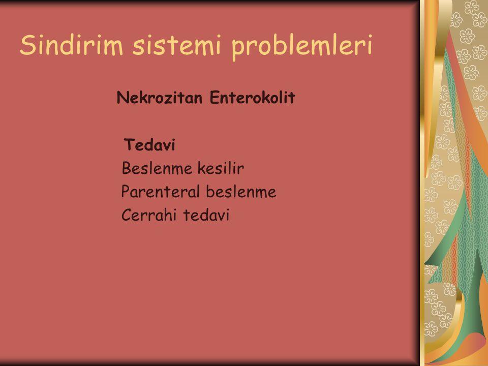 Sindirim sistemi problemleri