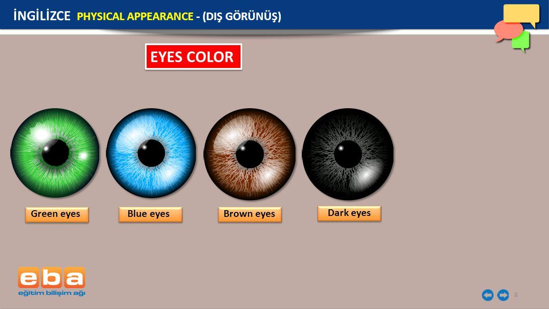 EYES COLOR İNGİLİZCE PHYSICAL APPEARANCE - (DIŞ GÖRÜNÜŞ) Green eyes