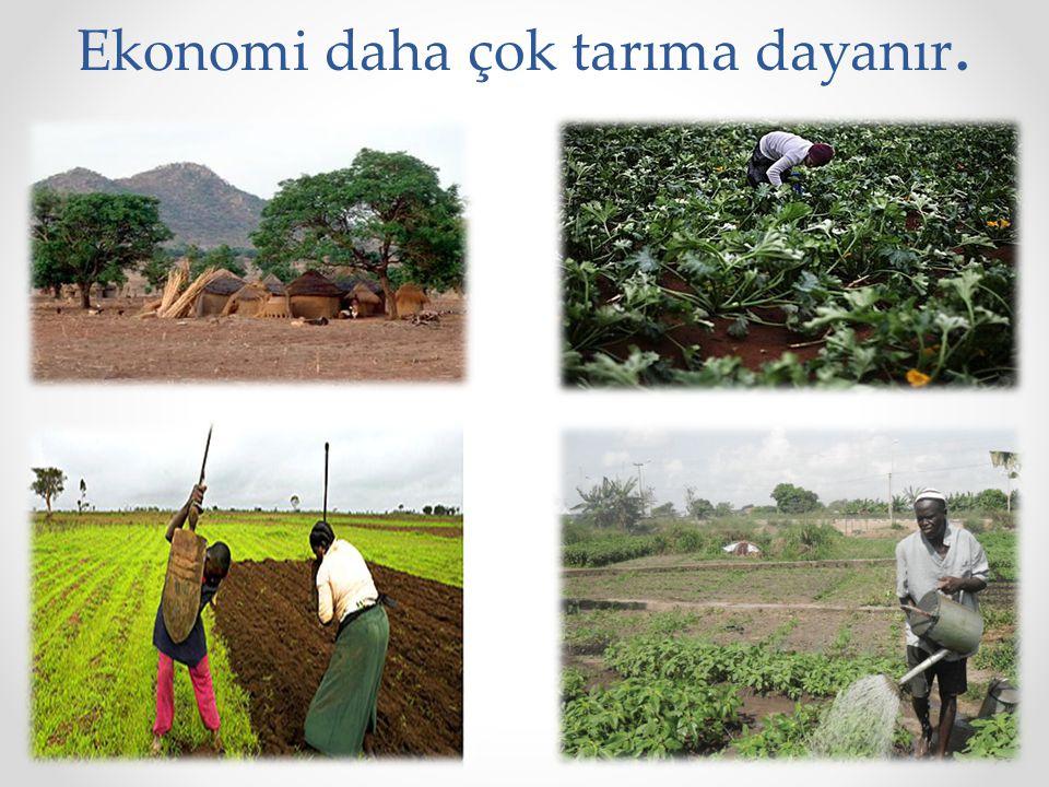 Ekonomi daha çok tarıma dayanır.
