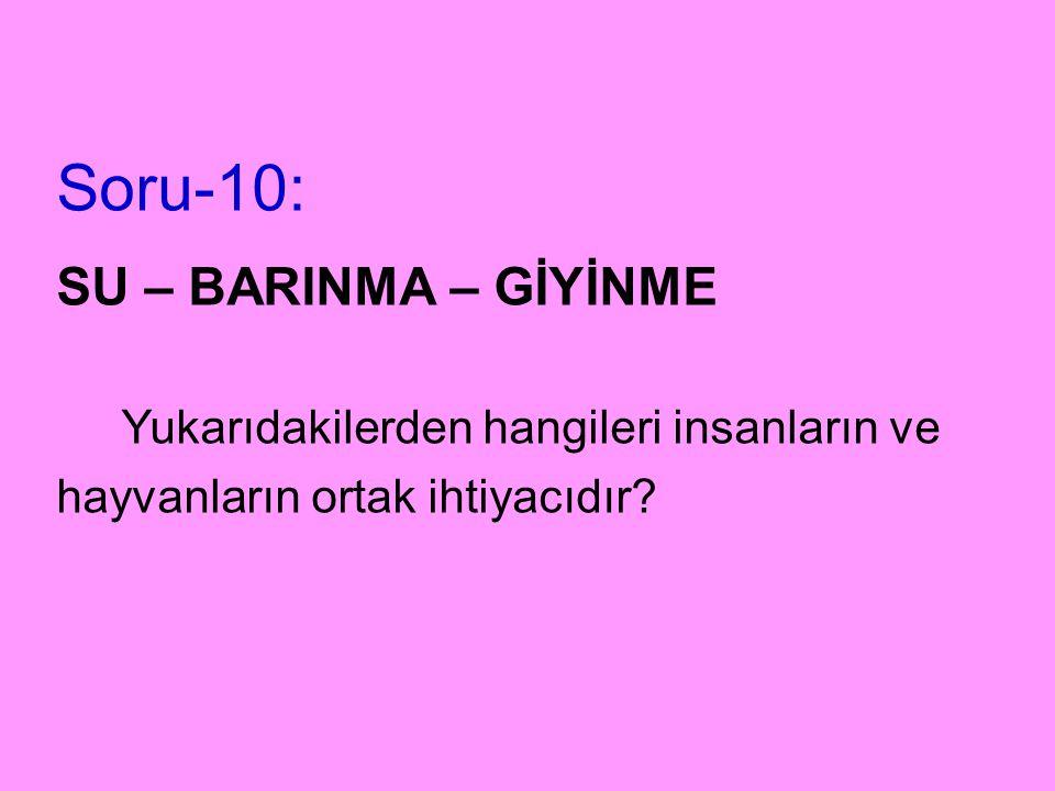 Soru-10: SU – BARINMA – GİYİNME Yukarıdakilerden hangileri insanların ve hayvanların ortak ihtiyacıdır