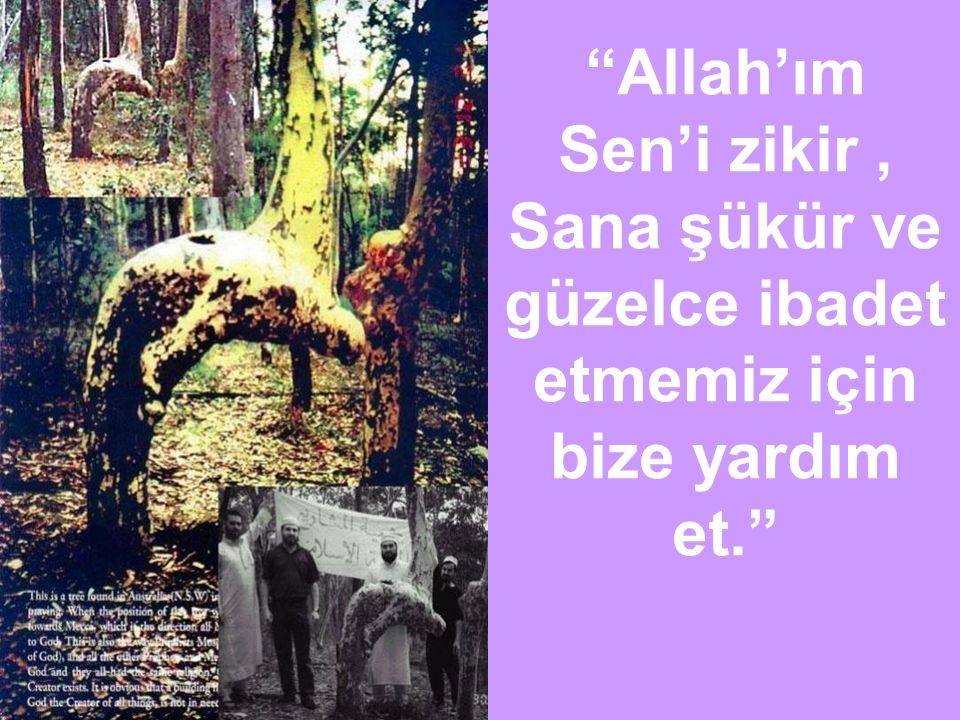 Allah'ım Sen'i zikir , Sana şükür ve güzelce ibadet etmemiz için bize yardım et.