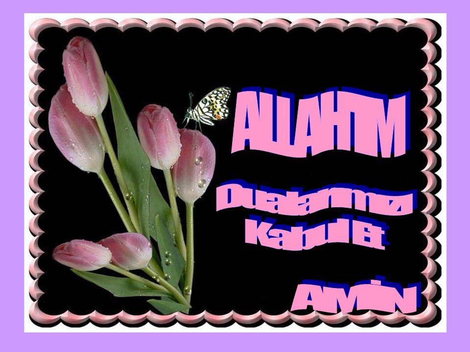 ALLAH IM Dualarımızı Kabul Et AMİN