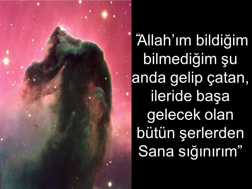Allah'ım bildiğim bilmediğim şu anda gelip çatan, ileride başa gelecek olan bütün şerlerden Sana sığınırım
