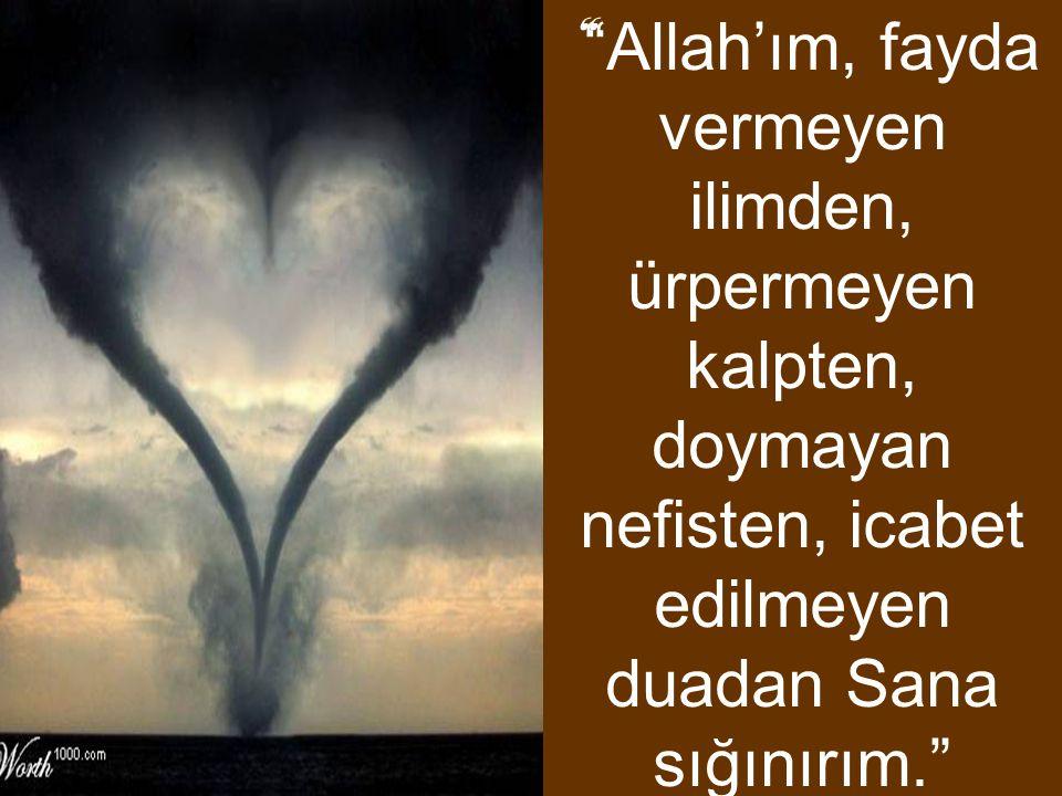 Allah'ım, fayda vermeyen ilimden, ürpermeyen kalpten, doymayan nefisten, icabet edilmeyen duadan Sana sığınırım.