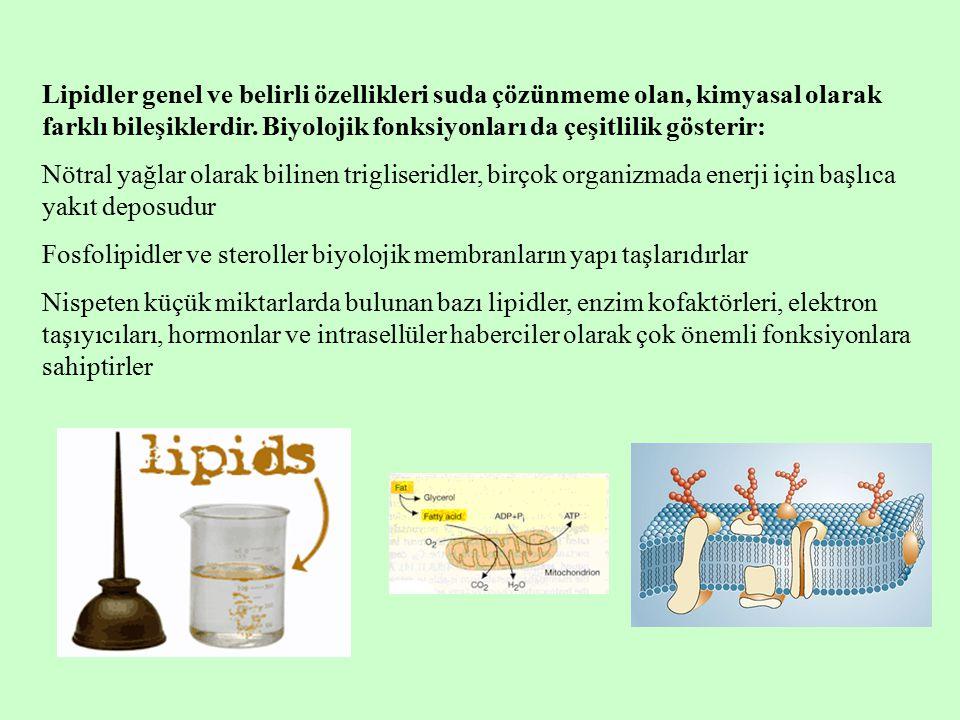 Lipidler genel ve belirli özellikleri suda çözünmeme olan, kimyasal olarak farklı bileşiklerdir. Biyolojik fonksiyonları da çeşitlilik gösterir: