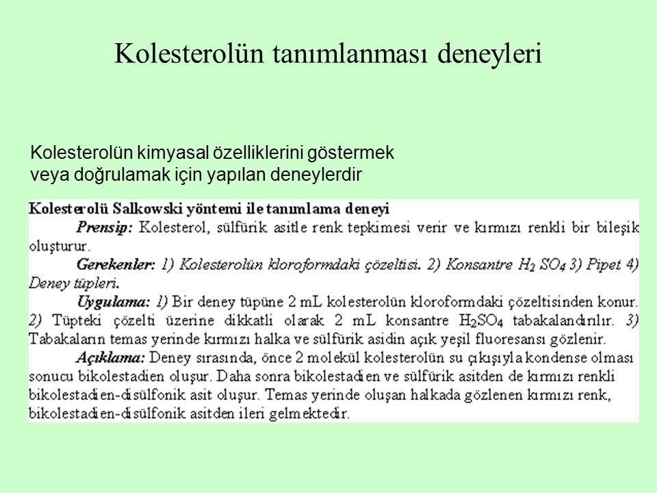 Kolesterolün tanımlanması deneyleri