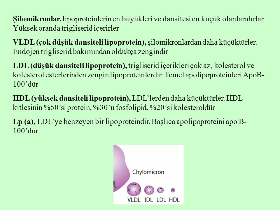 Şilomikronlar, lipoproteinlerin en büyükleri ve dansitesi en küçük olanlarıdırlar. Yüksek oranda trigliserid içerirler