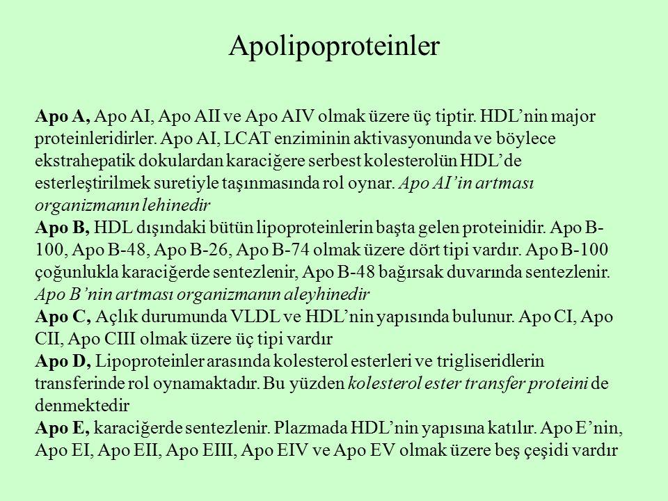 Apolipoproteinler