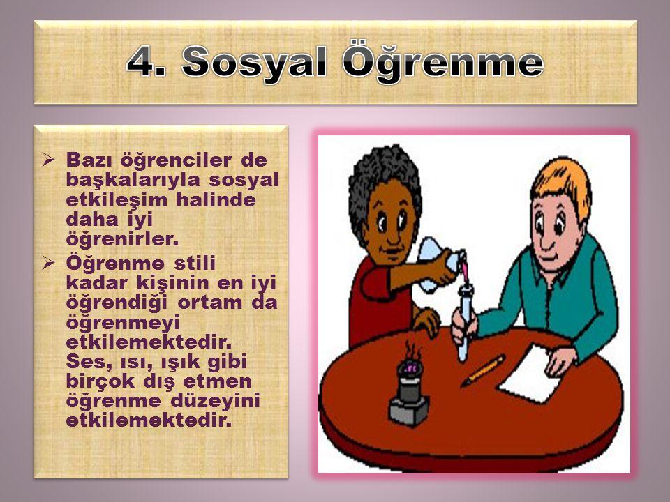 4. Sosyal Öğrenme Bazı öğrenciler de başkalarıyla sosyal etkileşim halinde daha iyi öğrenirler.