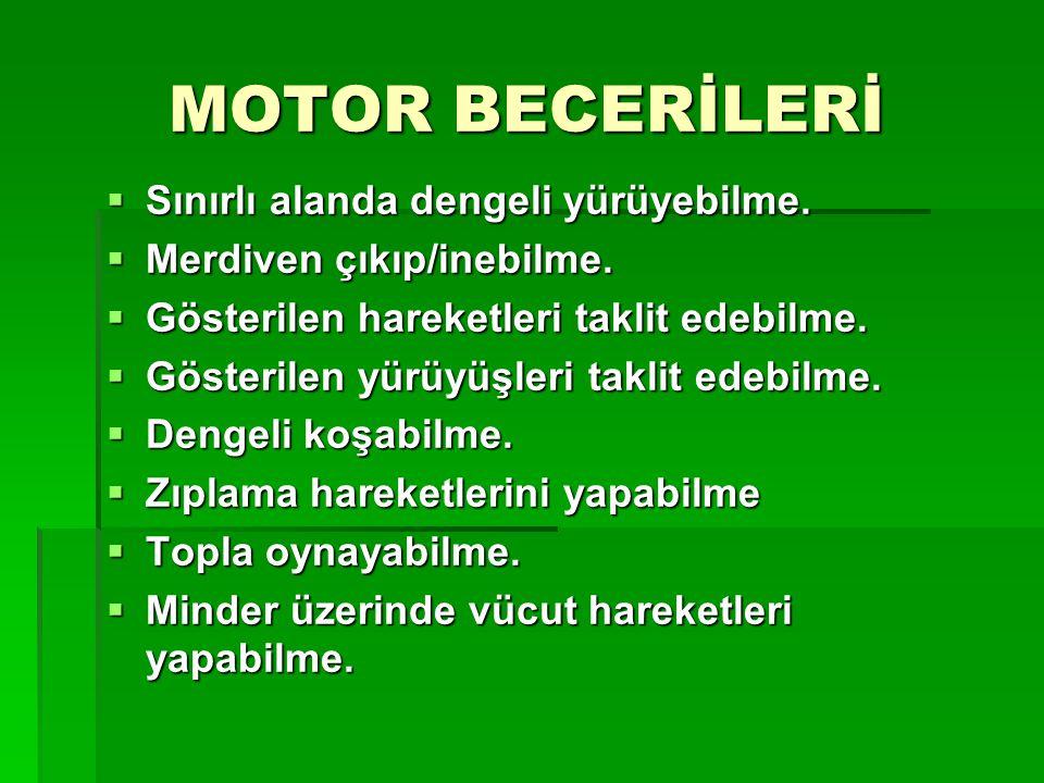 MOTOR BECERİLERİ Sınırlı alanda dengeli yürüyebilme.