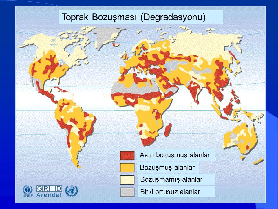 Toprak Bozuşması (Degradasyonu)
