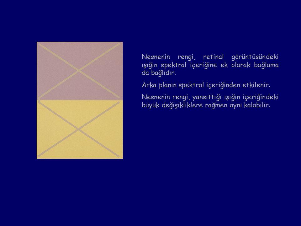 Nesnenin rengi, retinal görüntüsündeki ışığın spektral içeriğine ek olarak bağlama da bağlıdır.