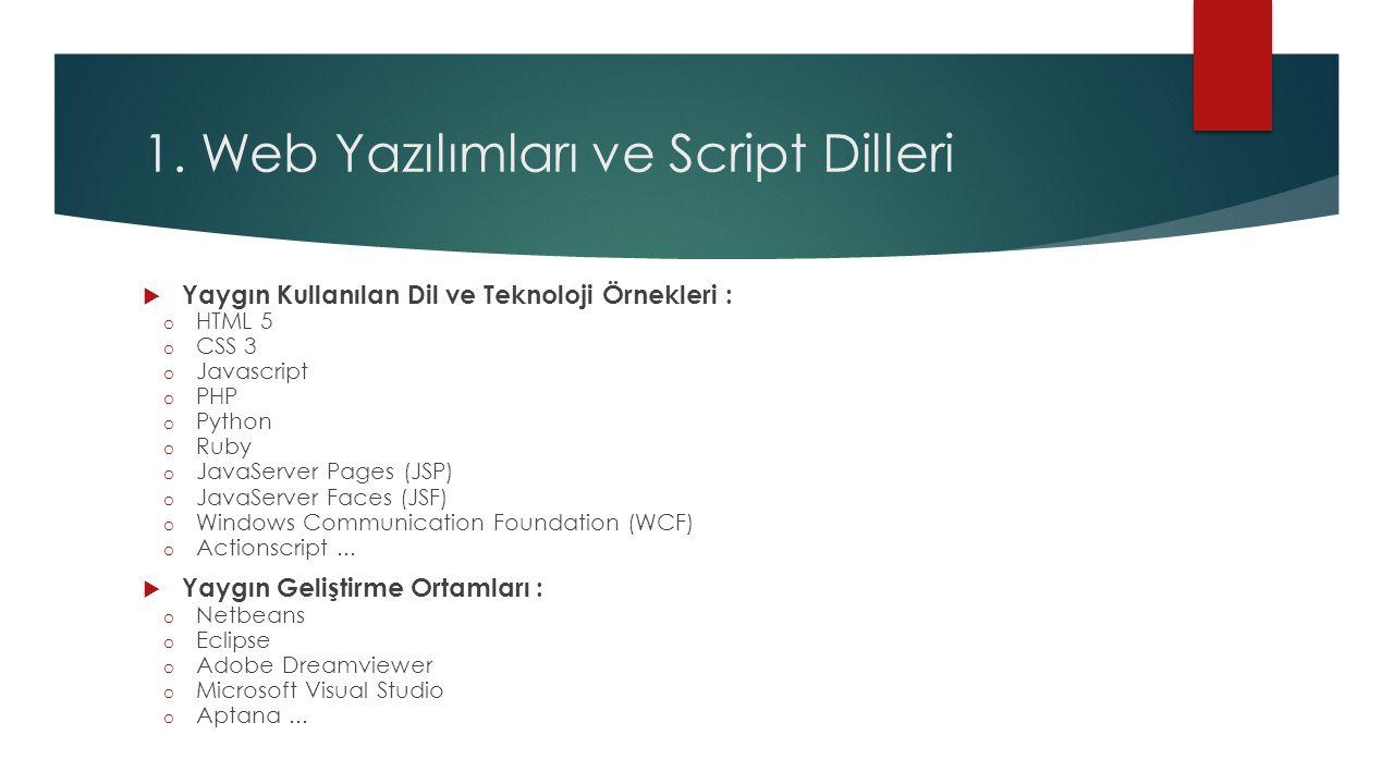 1. Web Yazılımları ve Script Dilleri