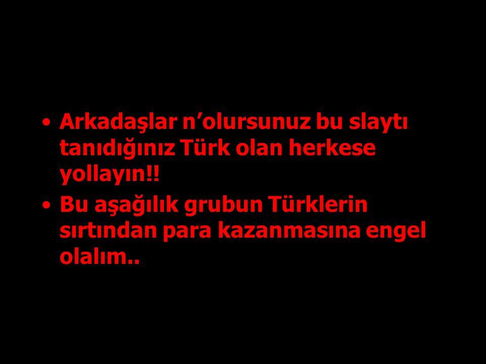Arkadaşlar n'olursunuz bu slaytı tanıdığınız Türk olan herkese yollayın!!
