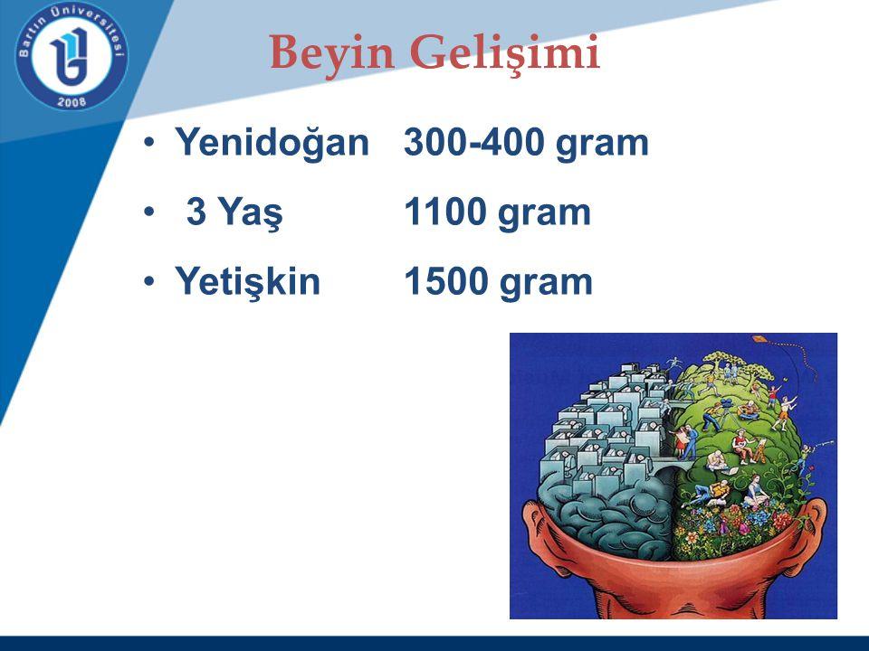 Beyin Gelişimi Yenidoğan 300-400 gram 3 Yaş 1100 gram