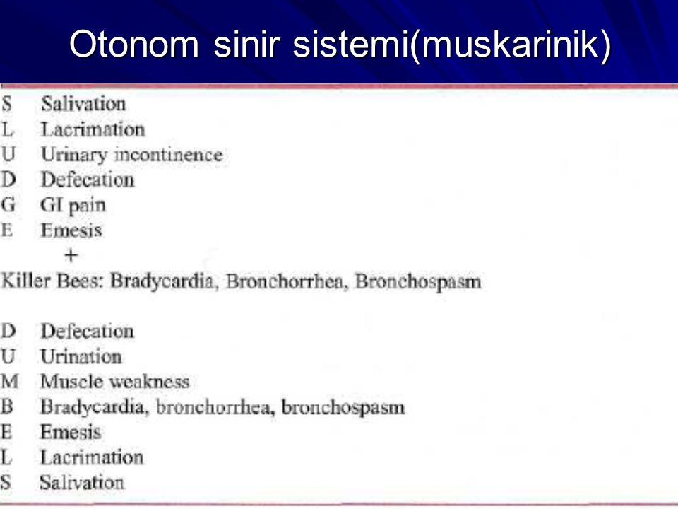 Otonom sinir sistemi(muskarinik)