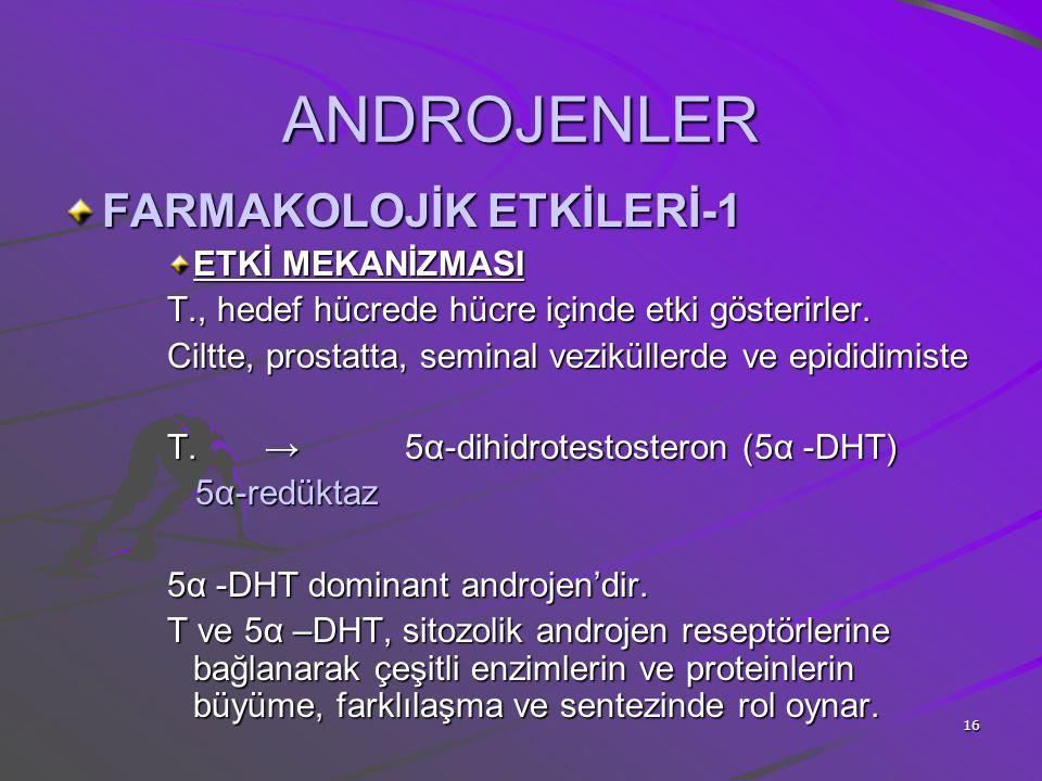 ANDROJENLER FARMAKOLOJİK ETKİLERİ-1 ETKİ MEKANİZMASI