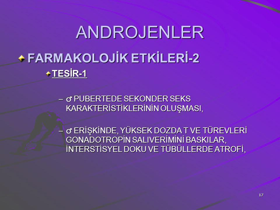 ANDROJENLER FARMAKOLOJİK ETKİLERİ-2 TESİR-1