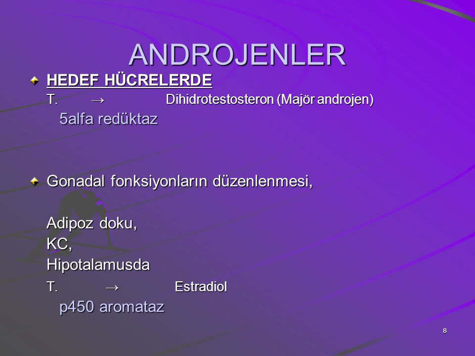 ANDROJENLER HEDEF HÜCRELERDE 5alfa redüktaz