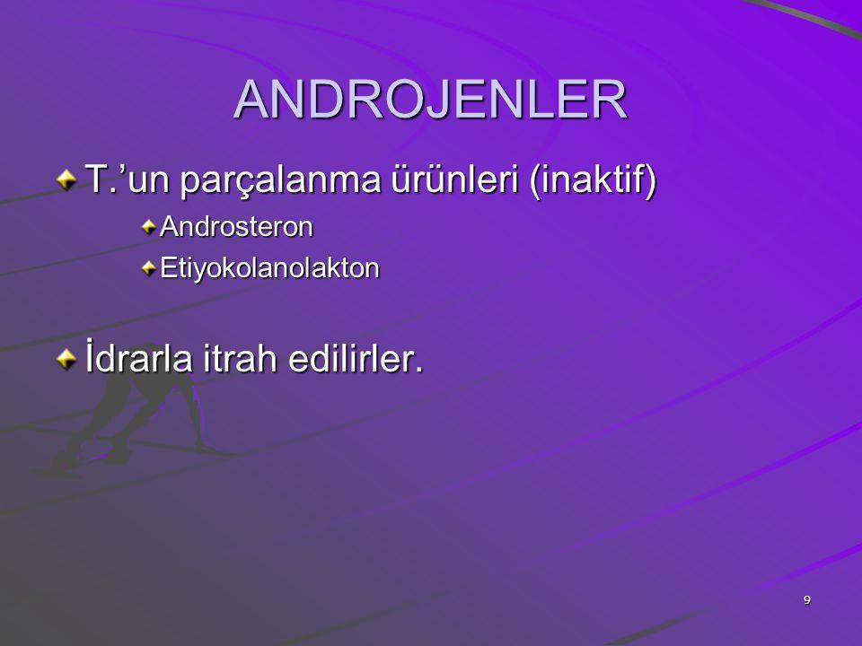 ANDROJENLER T.'un parçalanma ürünleri (inaktif)
