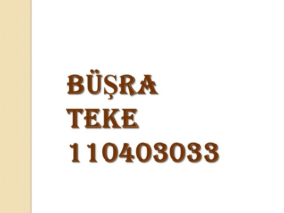 BüŞra Teke 110403033