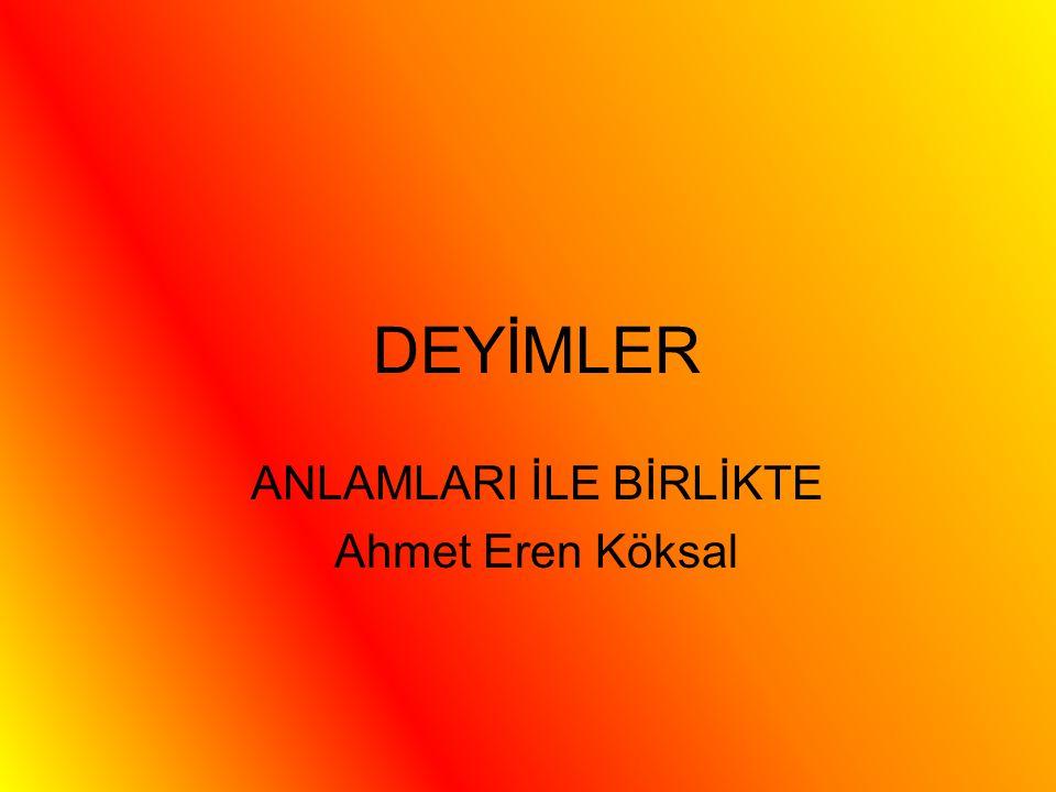 ANLAMLARI İLE BİRLİKTE Ahmet Eren Köksal