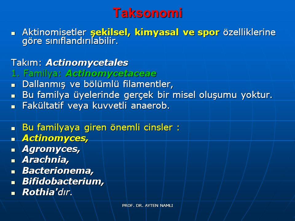 Taksonomi Aktinomisetler şekilsel, kimyasal ve spor özelliklerine göre sınıflandırılabilir. Takım: Actinomycetales.