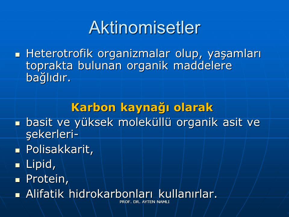 Aktinomisetler Heterotrofik organizmalar olup, yaşamları toprakta bulunan organik maddelere bağlıdır.