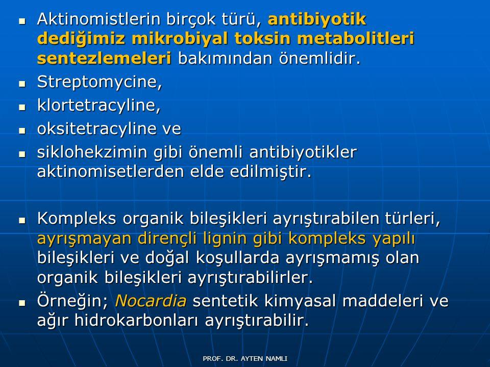 Aktinomistlerin birçok türü, antibiyotik dediğimiz mikrobiyal toksin metabolitleri sentezlemeleri bakımından önemlidir.