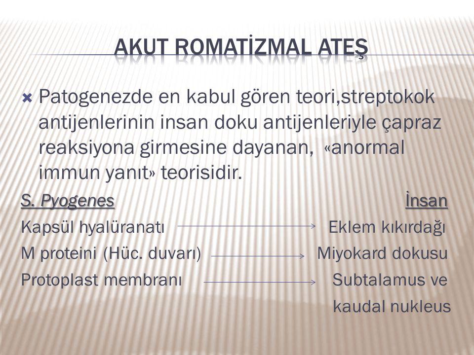 Akut romatİZMAL ATEŞ