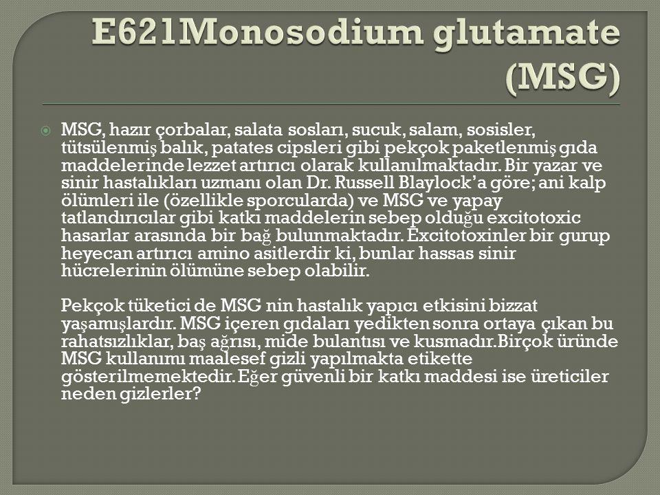 E621Monosodium glutamate (MSG)