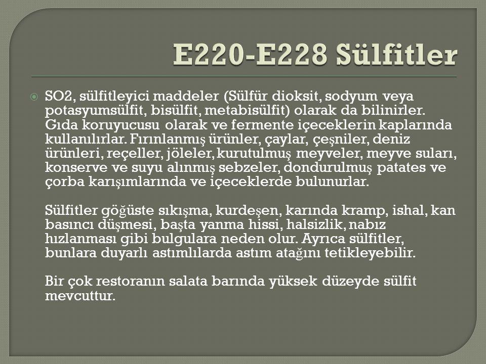 E220-E228 Sülfitler