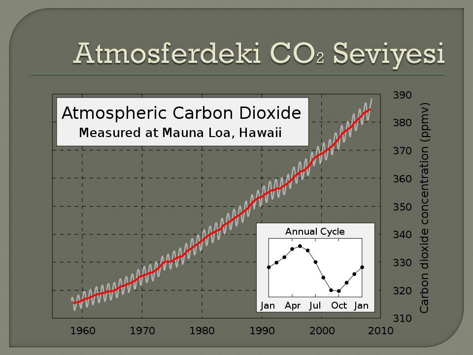 Atmosferdeki CO2 Seviyesi